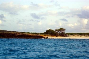 Dog Island Anguilla
